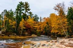 Floden i skog, i föreställt, vaggar medborgaren Lakeshore, USA autum Royaltyfria Foton