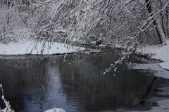 Floden i vinterskogen Fotografering för Bildbyråer