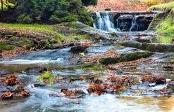 Floden kör över stenblock i skogen Arkivbilder