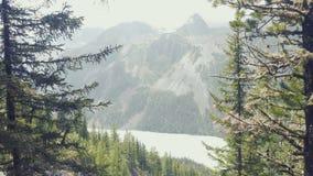 Floden Kucherla flödar till och med skogen mot bakgrunden av snöig berg Sommar klar himmel lager videofilmer