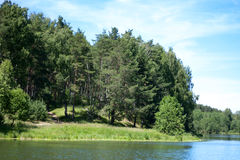 Floden landskap Royaltyfri Bild