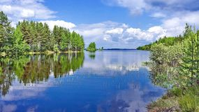 Floden med skogsbevuxna kuster och en molnfri himmel Reflexion av himlen i vatten arkivfoton