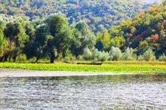 Floden och kullen arkivfoto