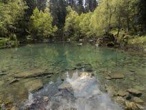 Floden och skogen Arkivfoton