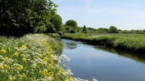 Floden som är tam i vår, Sandwell dal Arkivfoton
