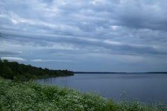 Floden som flödar bland grönskan, blommorna och skogen arkivfoto