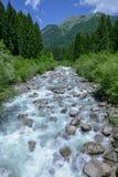 Floden som flödar i Adamelloen naturliga Brenta, parkerar royaltyfria bilder
