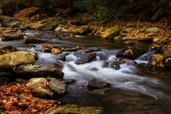Floden som flödar med Autumn Leaves och, vaggar rökiga berg Natio Royaltyfria Bilder