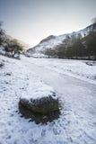 Floden som flödar till och med snö, täckte vinterlandskap i skogen va Royaltyfri Fotografi