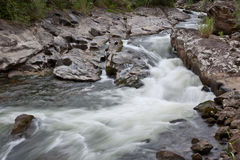 Floden som flödar vaggar igenom royaltyfria foton