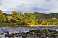 Floden Spey på Craigellachie. Royaltyfria Bilder