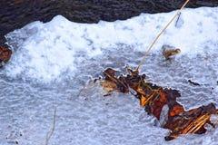 Floden täckas med is Arkivbilder