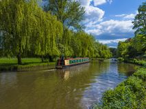 Floden Wey Guildford Surrey, England royaltyfri fotografi