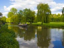 Floden Wey Guildford Surrey, England royaltyfri foto