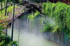 floder Royaltyfri Fotografi