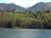Floder, berg och träd royaltyfri foto