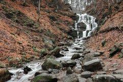 Floder för Carpathian berg Royaltyfria Bilder