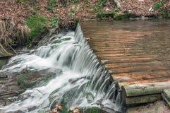 Floder för Carpathian berg Royaltyfri Bild