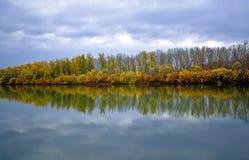 floder för höstpojmaregn Royaltyfri Fotografi