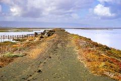 Flodfördämning i Alviso träsk efter en regnig dag, södra San Francisco Bay, San Jose, Kalifornien arkivfoto