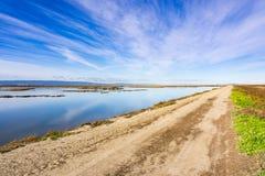 Flodfördämning i Alviso träsk, södra San Francisco Bay, San Jose, Kalifornien royaltyfri bild