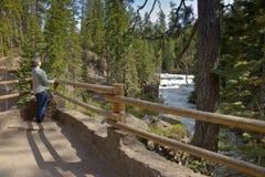 Flodflöde och skogcentral Oregon Arkivfoto