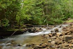 Flodflöden Arkivbild