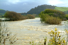 flodflod Royaltyfria Bilder