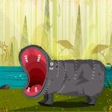 Flodhäst för löst djur i djungelskogbakgrund Arkivbilder