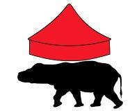 Flodhäst i cirkus Arkivfoto