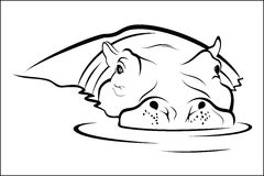 Flodhästen bevattnar in Royaltyfri Fotografi