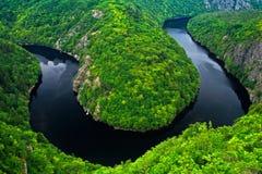 Flodkanjonen med mörkt vatten och den gröna skoghästskon för sommar böjer, den Vltava floden, Tjeckien Härligt landskap med flode royaltyfri foto