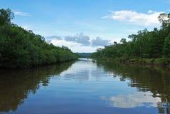 Flodkryssning Arkivbilder