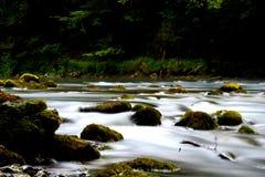 Flodkupa Arkivbilder