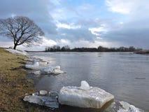Flodkust i vinter Royaltyfria Bilder