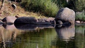 Flodkust Rysk sommar lager videofilmer