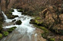 Flodlandskap Royaltyfri Fotografi