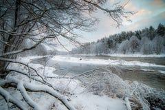 Flodlandskap i snöig skog royaltyfri foto