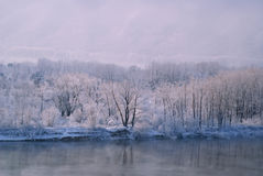 Flodlandskap i vinter Arkivfoto