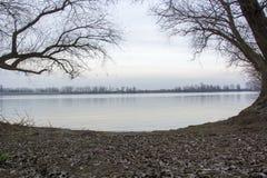 Flodlandskap med träd på sida Arkivbild