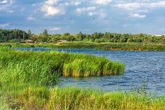 Flodlandskap på en sommardag Arkivfoto