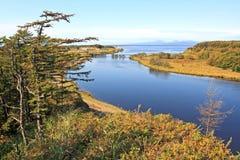 Flodliggande Arkivfoton