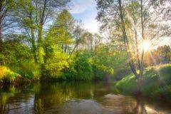 Flodmorgonlandskap Ljus sol på sommarflodstranden Scenisk vibrerande natur arkivbilder