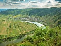 FlodMoselle ögla på byn Bremm, Tyskland Arkivbilder
