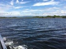 Flodmun Arkivbilder