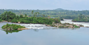 FlodNilenlandskap nära Jinja i Afrika Arkivbilder