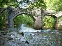 Flodpilen i Devon royaltyfria bilder