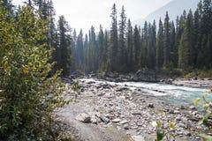 Flodplats för steniga berg Arkivbilder