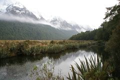 Flodplats i Fiordland Royaltyfri Bild