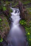 Flodrörelse Royaltyfria Bilder